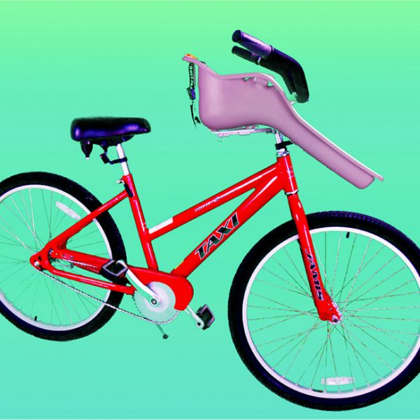 Adult Bike W Baby Seat Moneysworth Beach Equipment And Linen